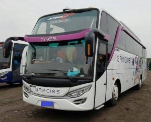 Bus Luxury